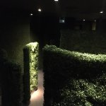 Through a green maze to the restroom