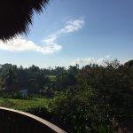 Photo of Ubud Green
