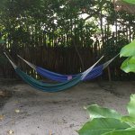 Hammocks in the shade with ocean views