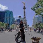 A mis espaldas el monumento al Ángel de Independencia sobre Paseo de la Reforma