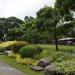 Photo of Ayala Triangle Gardens