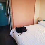 Foto de Ibis Arles