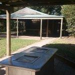 Free BBQ in Picnic area