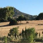 Photo de Agriturismo il Mirto