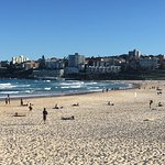 Photo de North Bondi Fish