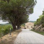 Photo of Il Nuovo Appennino Azienda Agrituristica