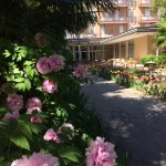 Photo de Hotel Terme Villa Piave