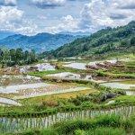 Batutumonga Tana Toraja Indonesia