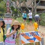 Photo of Lanikai Pillboxes