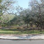 Foto de Fort Matanzas National Monument