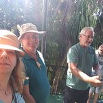Guided tour at Hemingway House