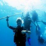 Diving in Fujairah with Al Boom Diving