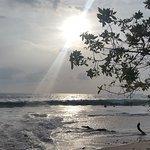 Photo de Flamingo Beach Resort & Spa