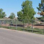 Dog park area