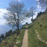 Foto di Sentiero degli dei (Path of the Gods)