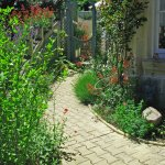 This May in the Garden at La Brasserie 86500 nr Montmorillon