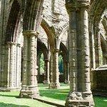 Medley of Ancient Medieval Sandstone Carved Columns!