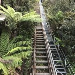 Scenic World Blue Mountains Foto
