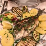 Grilled porgy