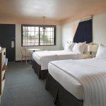 Standard 2 Queen Beds Room