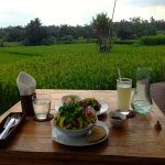 Great food over a sea of green. The salads here are not to be missed!