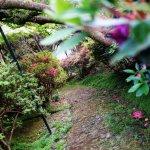 Foto de Monte Palace Tropical Garden