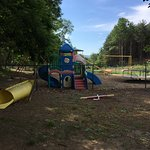 Natural Bridge/Lexington KOA From Bark Park looking towards Children's Playground