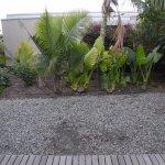 Garden View, sitting on patio