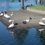 Photo de Lake Eola Park