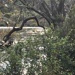 upstream from falls