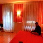 Room in Hotel Garda