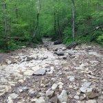 Near the Rock Run Loop trailhead