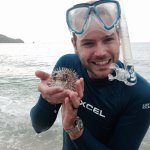 Tons of puffer fish to play with.