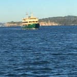 Manly ferry arriving with wilderness in background. 30 minutes to central Sydney.