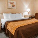 Quality Inn Tulalip - Marysville-billede