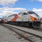 """Beep Beep"".....New Mexico Rail Runner......"