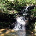 Land Trust of North Alabama Foto