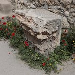 Church of Saint Anne - excavations - flowers