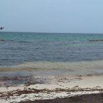 Photo of All Ritmo Cancun Resort & Waterpark