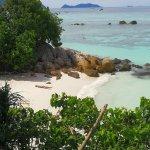 Private beach therapy