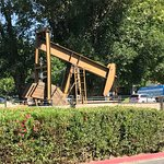 Pumpjack in the grounds of Four Points