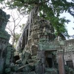 Pictures from Full Day with Sunrise Bike Tour of Angkor Wat