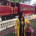 steam, is the restuarent of Rambagh palace hotel, old restored steam engine with station like lo