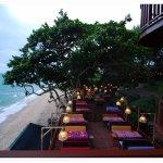 Photo of Birds & Bees Resort