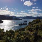 Fähr Einfahrt nach Picton