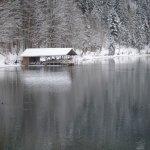 Alpsee Foto