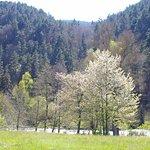 vue sur la rivière et montagne
