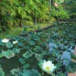 Khaolak Bhandari Resort and Spa Foto