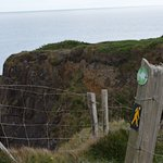 The cliff top