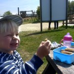 Family picnic held whilst planning the afternoons fun